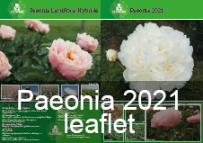 /wp-content/uploads/R2 Flowers BV leaflet Paeonia 2021.pdf
